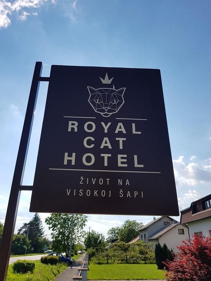 Čuvanje mačaka - Royal Cat Hotel